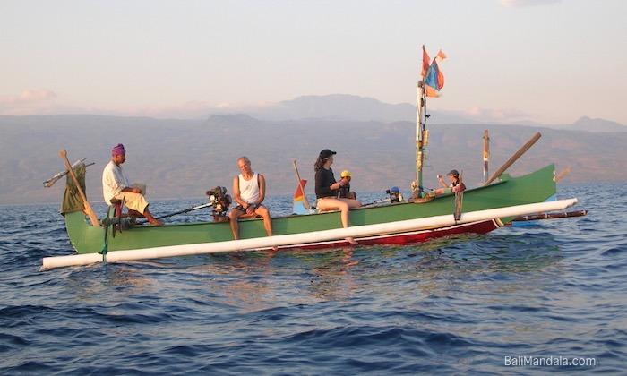 Bild Delfinausflug Bali Mandala