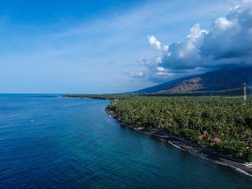 Bali Mandala News 1/2020